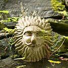 Lionhead by Rob Smith