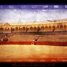 Plaza de Toros de la Maestranza - Sevilla by newshamwest