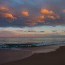 Beach Sunset by sharka69