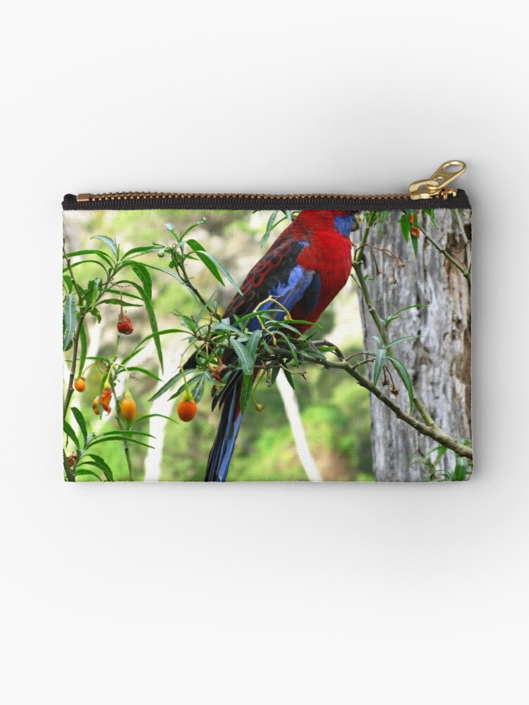 Crimson Rosella - Wilsons Promontory National Park by Marilyn Harris