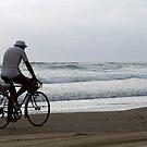 Baylys Beach bikey by Jenny Dean
