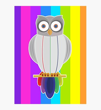 Rainbow Owl (Rainbow) Photographic Print