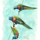 Rainbow Lorikeets on Wire by Meaghan Roberts