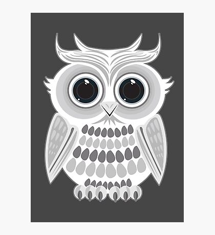 White Owl - Grey Photographic Print