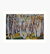 Birches, Rivelin Art Print