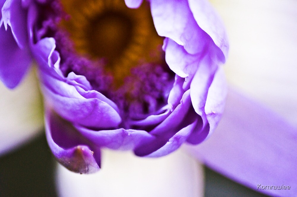 Pretty Blur by Kornrawiee