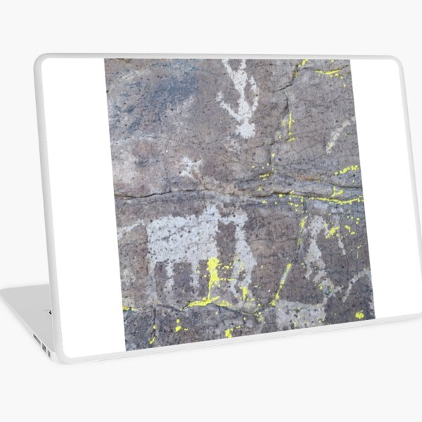 Arcosanti AZ petroglyphs Laptop Skin