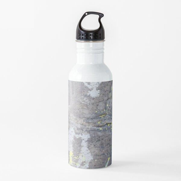 Arcosanti AZ petroglyphs Water Bottle