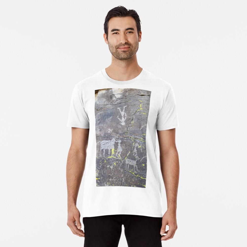 Arcosanti AZ petroglyphs Premium T-Shirt