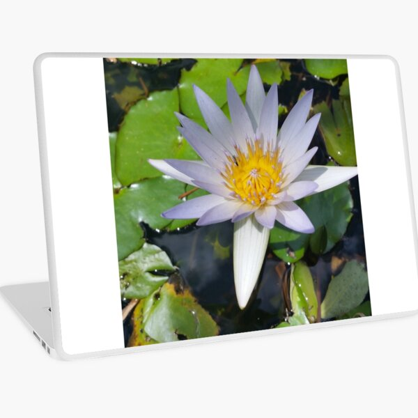 The lotus flower Laptop Skin