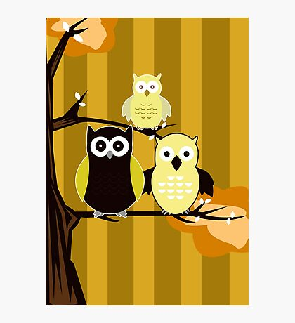Yellow Owls Photographic Print
