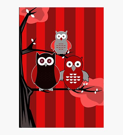 Red Owls Photographic Print