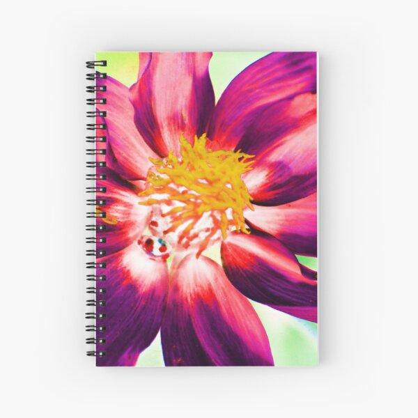 Light Effect -33 Spiral Notebook