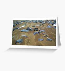 Rookery Beach 1 Greeting Card