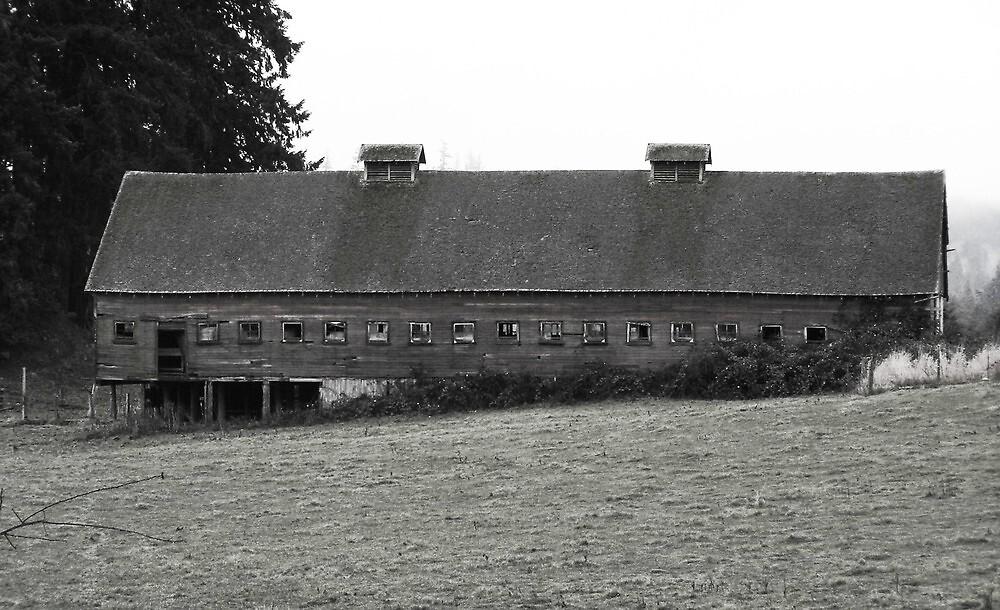 Window barn by arawak