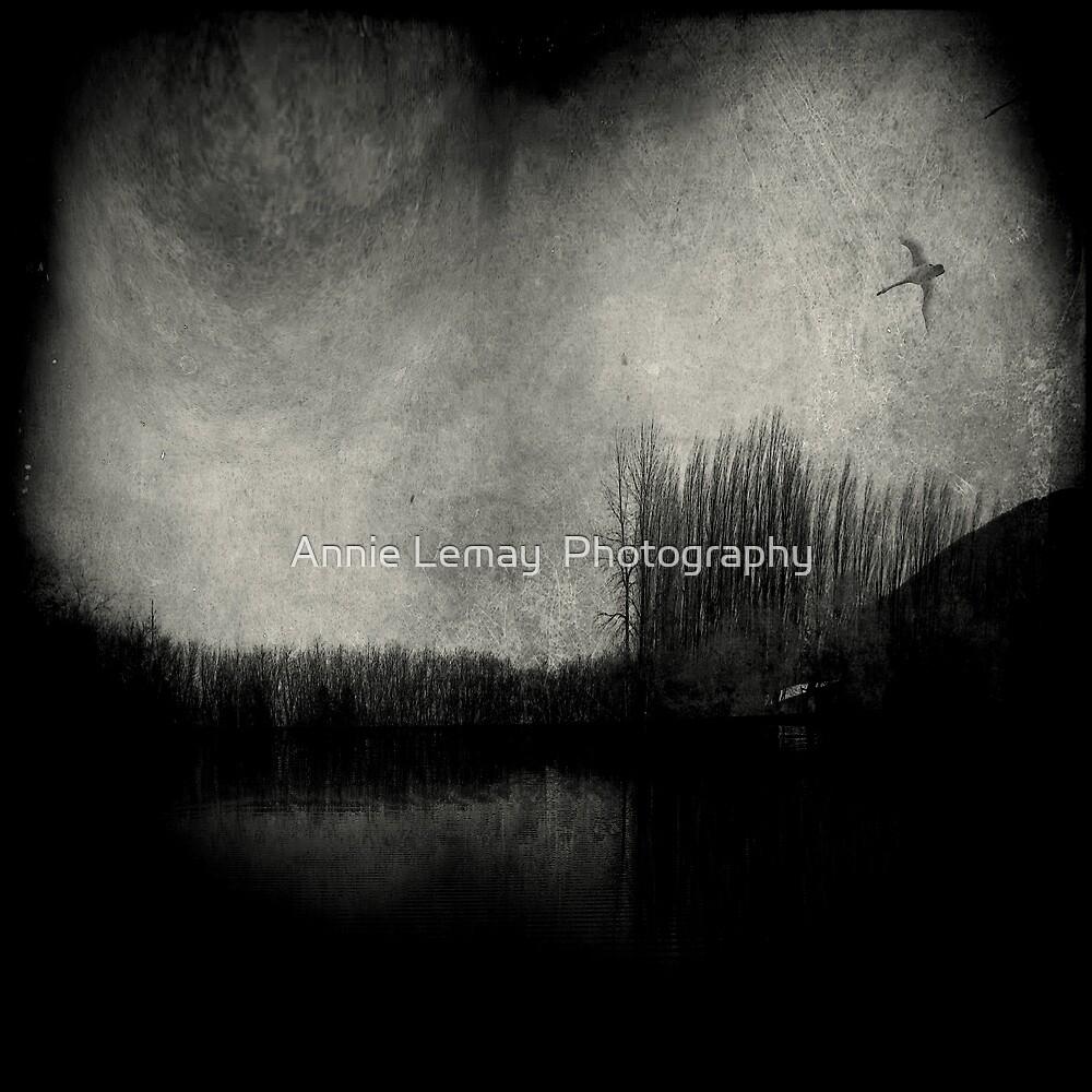 Feelin the Fear by Annie Lemay  Photography
