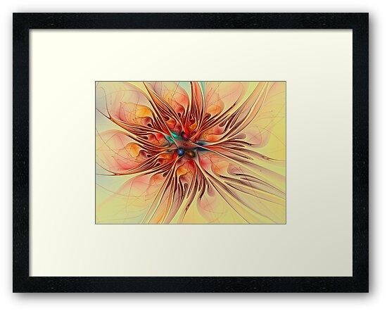Rainbow Colored Flower by Deborah  Benoit