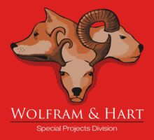 Wolfram and Hart - Angel
