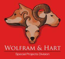 Wolfram and Hart - Angel