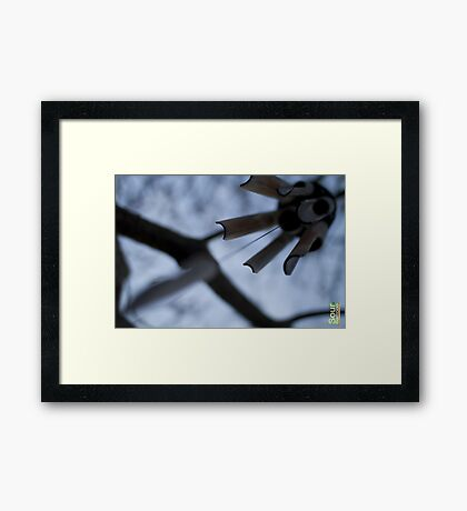 White day Framed Print