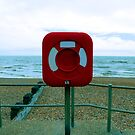 Beach Safety by John Dalkin
