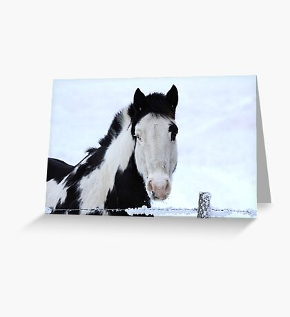 One Blue Eye Greeting Card
