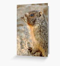 marmot-alert Greeting Card