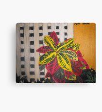 Plant Lattice Canvas Print