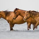 """""""Horse Power"""" - wild horses in the water by ArtThatSmiles"""
