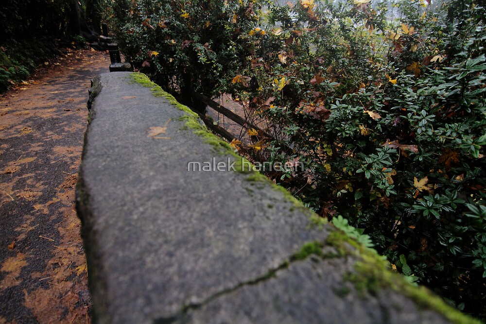 The way by malek haneen