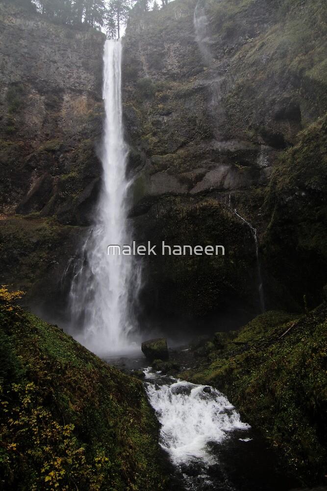 The great Lean in by malek haneen