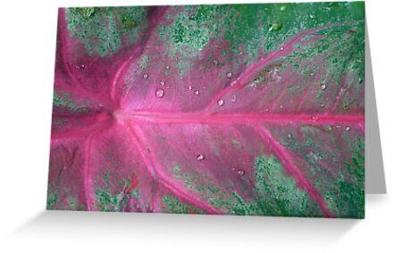 Kirsten Smith's 'artist's palette' by Art 4 ME