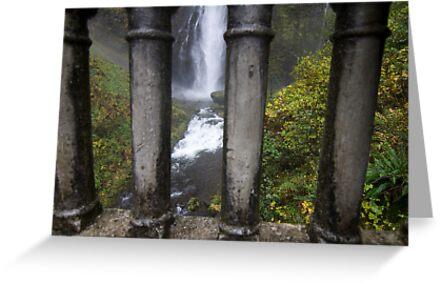 Jail of water by malek haneen