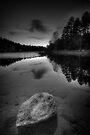 White Rock by Bob Larson