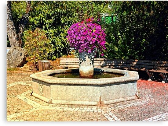 The village fountain of Eggendorf im Traunkreis by Patrick Jobst