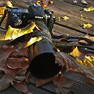 Neglected Nikon  ... (Be Back Soon!!)  by Heather Friedman
