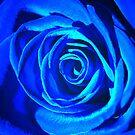 ~Winter Blues~ by Terri~Lynn Bealle