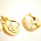 2 NUTS by D. D.AMO
