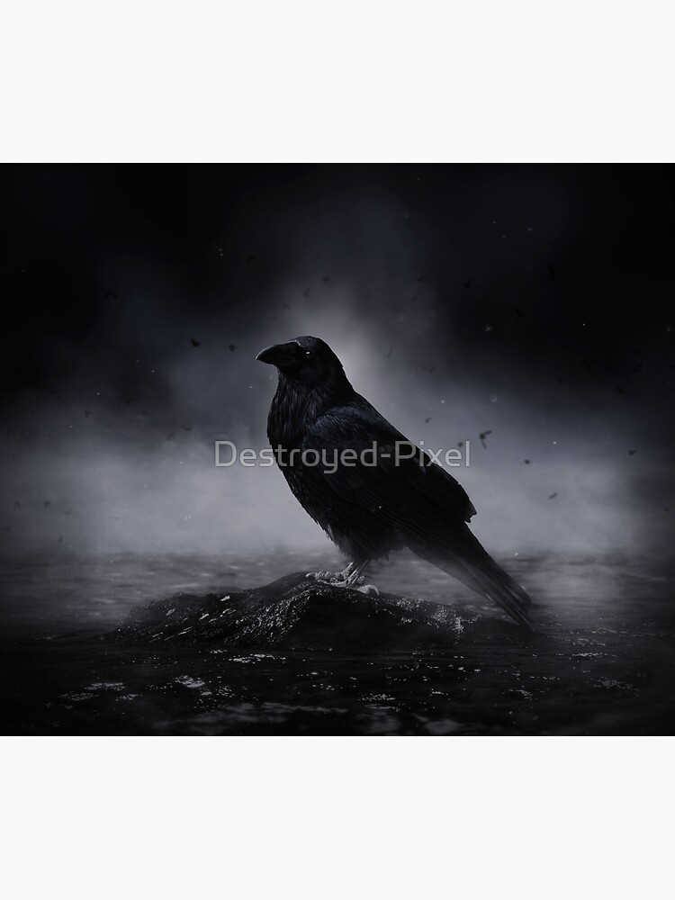 Raven in the fog by Destroyed-Pixel