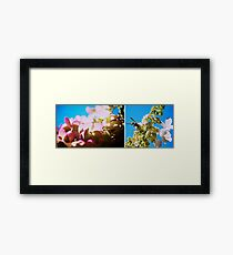 Cacophony of Colour Framed Print