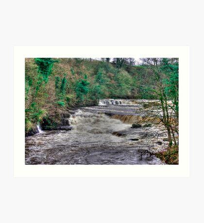 Aysgarth Falls  - Yorkshire Dales Art Print