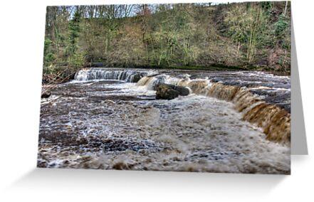 Aysgarth Falls - Wensleydale by Trevor Kersley