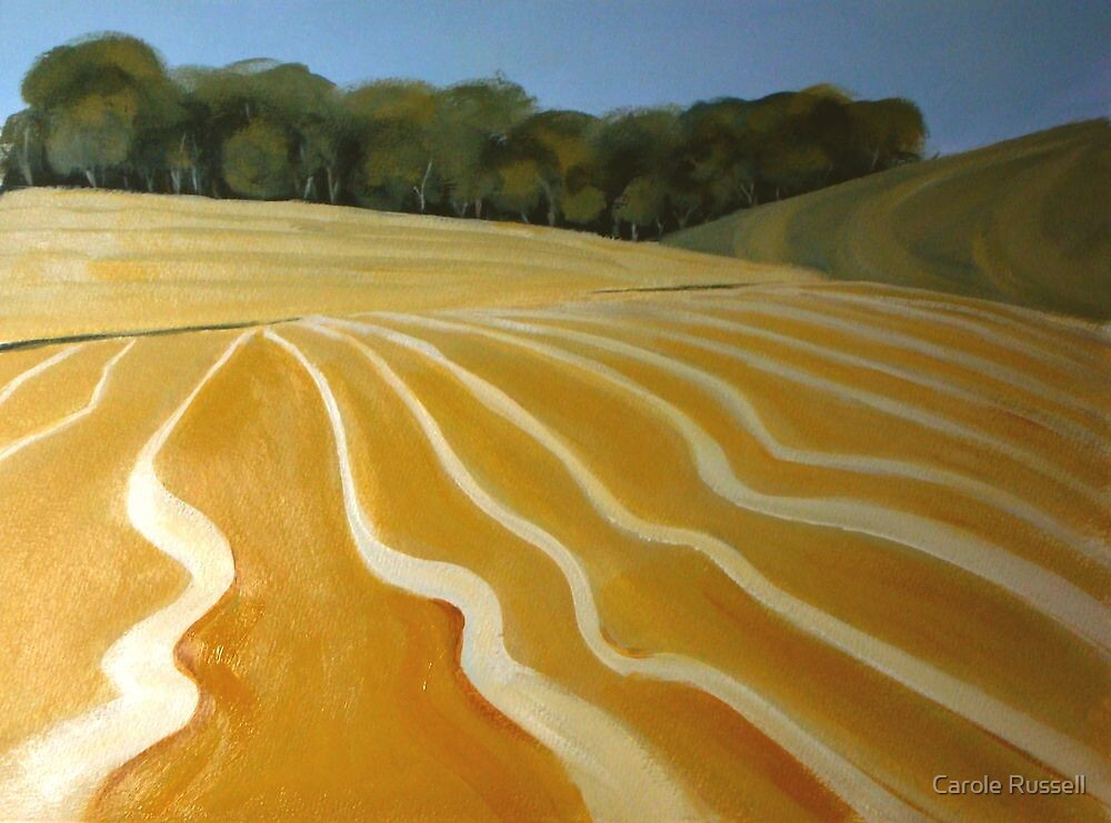 Patterns of the plow by Carole Russell