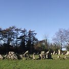 The Rollright stones...on a fine winters day!! by poohsmate