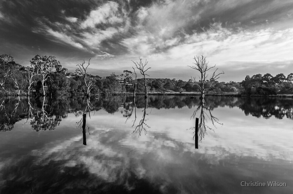 Banyule Flats  by Christine Wilson