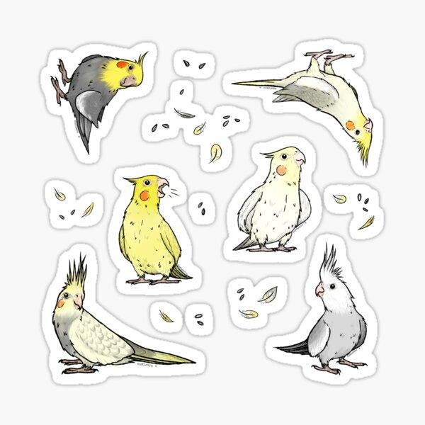 Cockatiel variety sticker sheet Sticker