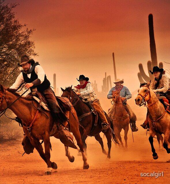 Sonoran desert ride by socalgirl