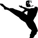 Tae Kwon Do by WillTudor