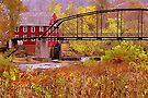 Ozark Mill Stream by NatureGreeting Cards ©ccwri