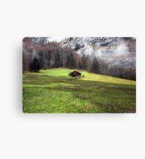 Suisse #5 Canvas Print